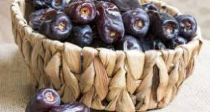صادرات و تجارت عمده خرما