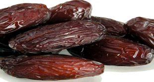 فروش انواع خرما ربی ایرانشهر